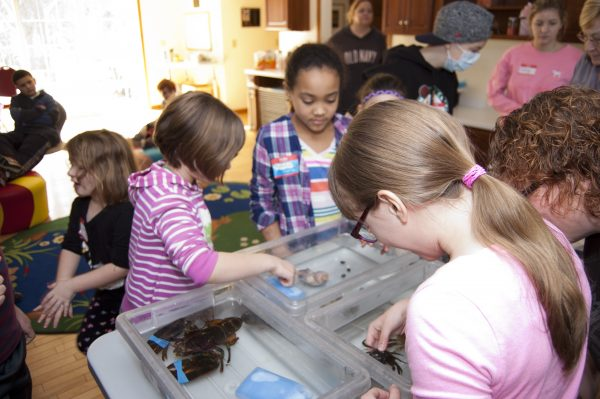 kids at touch tank